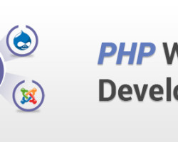 Hire the Well Reputed PHP Web Development Company