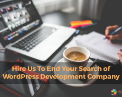Hire Us To End Your Search of WordPress Development Company