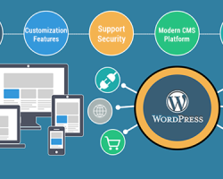 Smart Ways to keep your WordPress Website up-to-date and secure