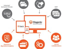 How To Tell If Magento Is The Right Platform In Your Case?