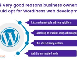 Very Good Reasons Why Business Owners Should Opt For WordPress Web Development