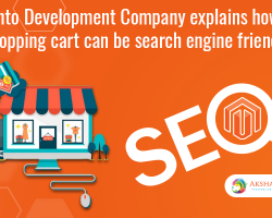 Magento Development Company Explains How Your Shopping Cart Can Be Search Engine Friendly