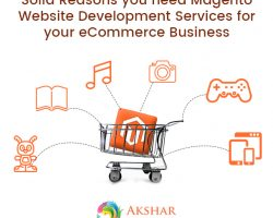 Solid Reasons You Need Magento Website Development Services For Your ECommerce Business