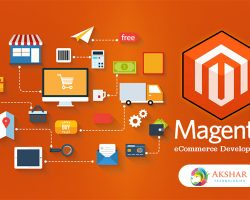 Take Your E-commerce Business To Another Level With The Help Of Magento Enterprise Edition